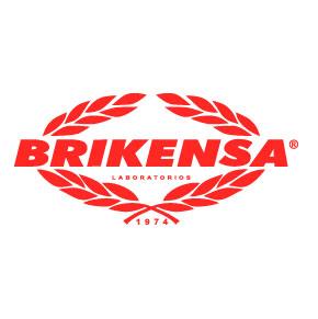 brikensa-logo