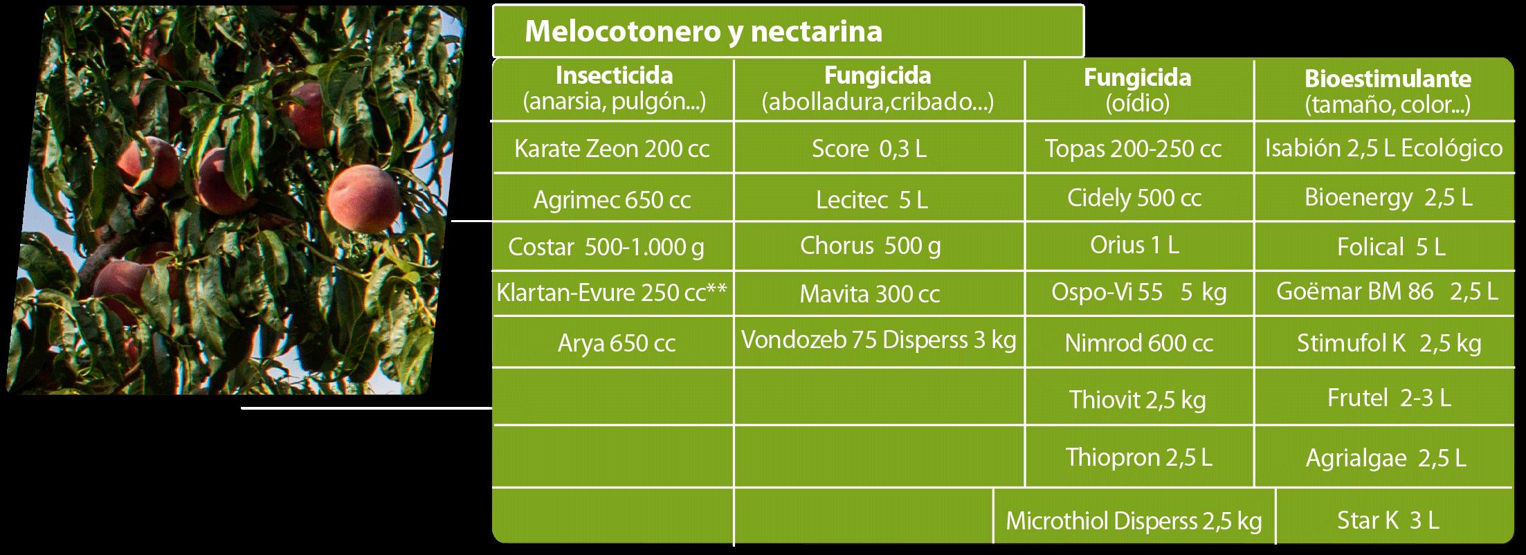 Agriconsejos julio Melocotonero-y-nectarina